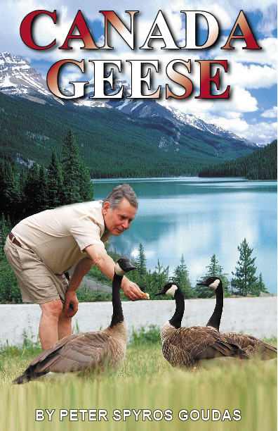 Canada Geese_Mr Goudas Recipes_ Chicken Feet