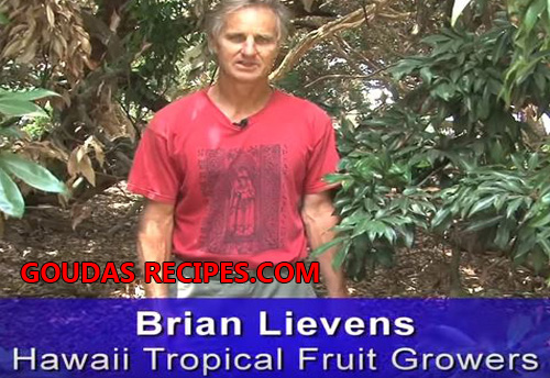Air Layering Lychee  By Brian Lievens