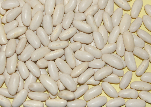 White Kidney Bean_ Bean Salad _ Mr Goudas Recipes